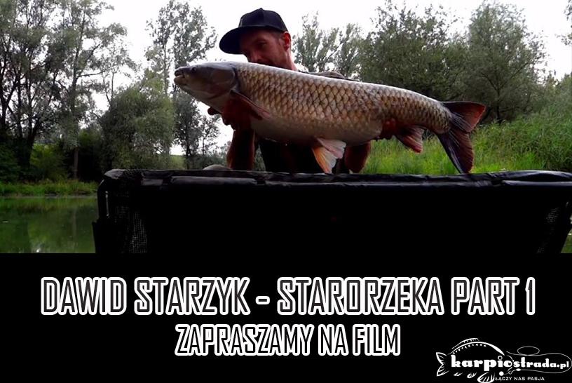 STARORZEKA PART 1 | DAWID STARZYK
