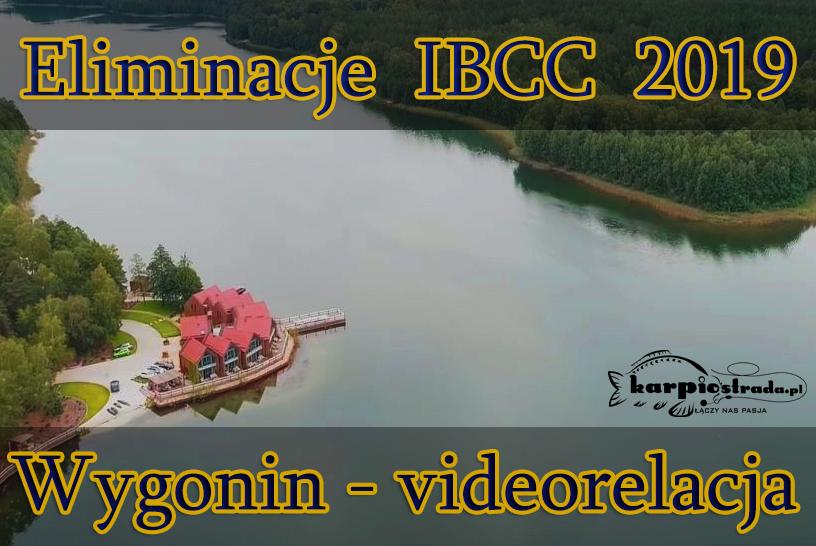 ELIMINACJE IBCC 2019 | WYGONIN
