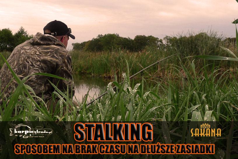 STALKING | ŁOWIENIE Z PODCHODU | SAKANA POLSKA