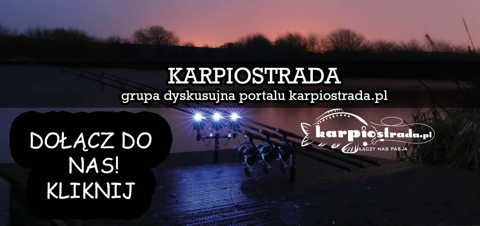 forum karpiowe