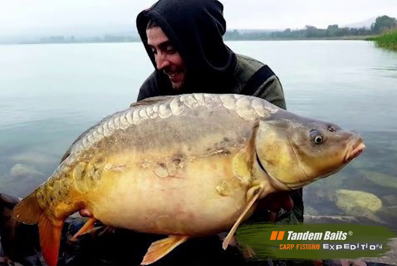 BALATON TANDEM BAITS CARP EXPEDITION
