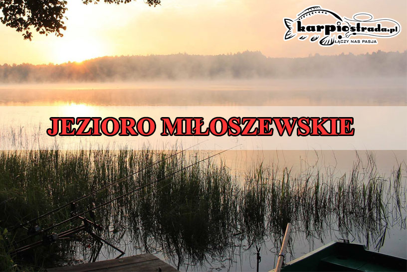 JEZIORO MIŁOSZEWSKIE – PATRONAT PORTALU KARPIOSTRADA.PL
