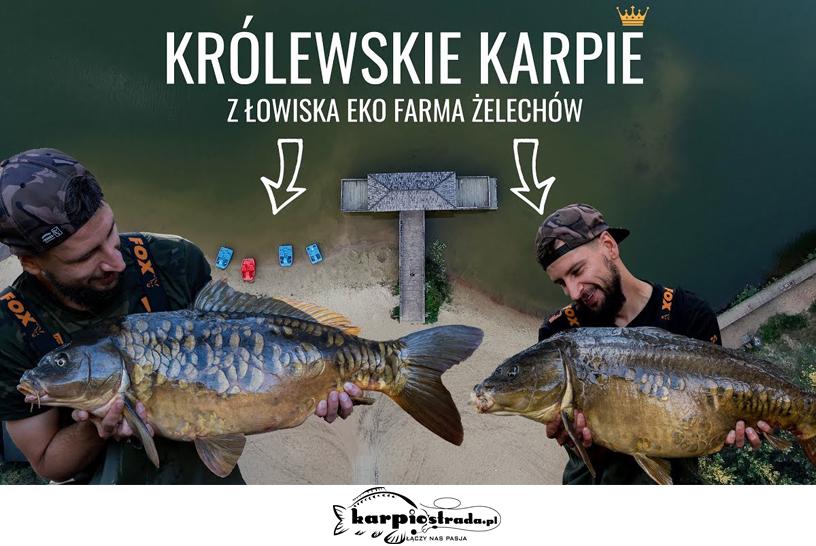 Zasiadka na łowisku Eko Farma Żelechów