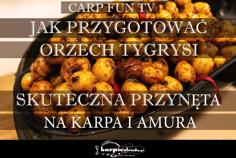 JAK PRZYGOTOWAĆ ORZECH TYGRYSI | CARP FUN TV