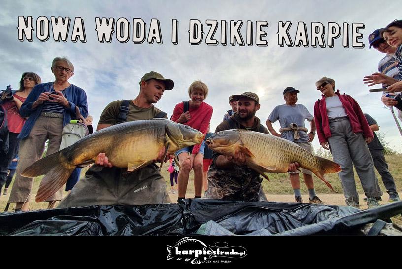 NOWA WODA I DZIKIE KARPIE | MATEUSZ WASIK