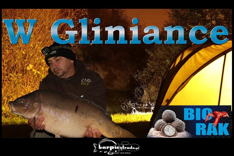 W GLINIANCE | CARP GRAVITY