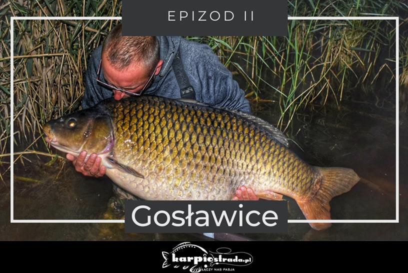 ŁOWISKO GOSŁAWICE | EPIZOD II
