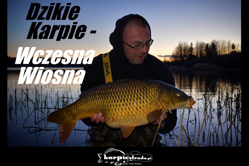 DZIKIE KARPIE | MAGIC CARP LIFE