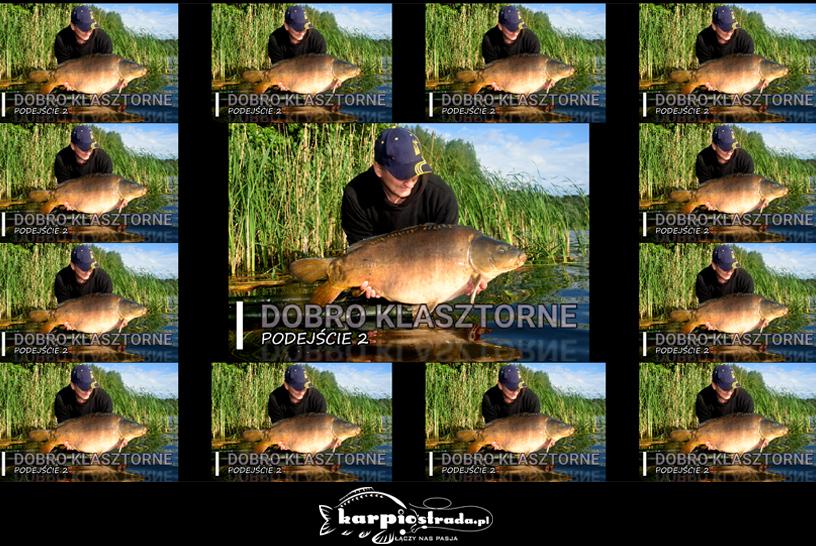 DOBRO KLASZTORNE | MARIO CARP FISHING