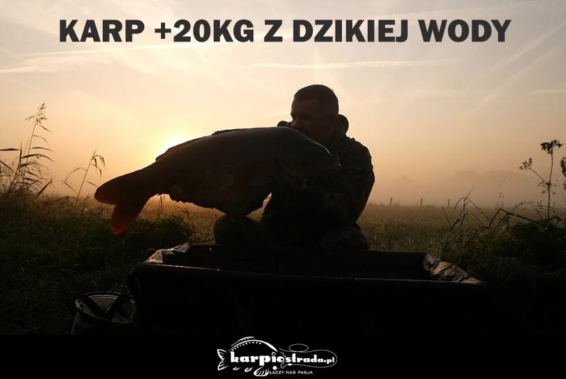 KARP +20 KG Z DZIKIEJ WODY